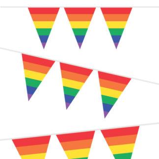 vlaggenlijn van 10 meter lang met vlaggetjes in de kleuren van de regenboog. Leuk voor ieder kinderfeestje.