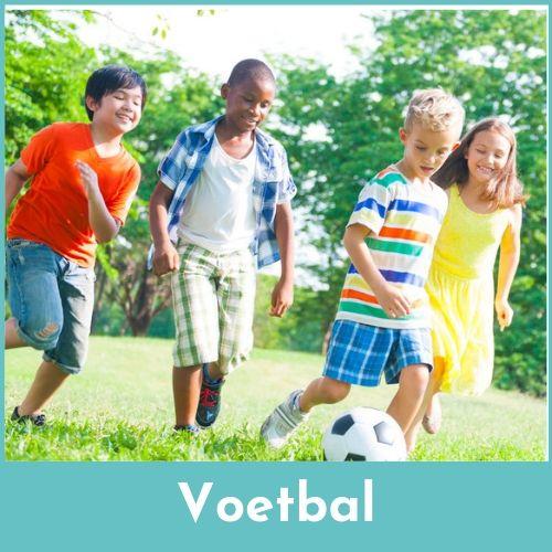 voetballende kinderen op het gras in de open lucht